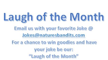 Laugh of the Month Submitions
